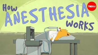 View full lesson: http://ed.ted.com/lessons/how-does-anesthesia-wor...