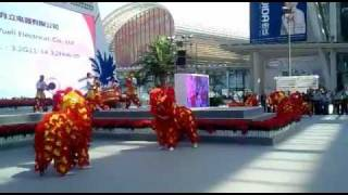 Chinese Lion dance and music live