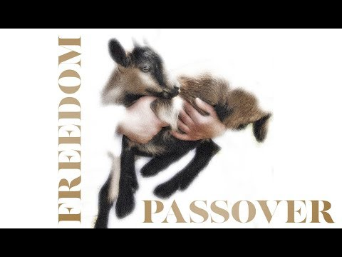 Temple Talk Radio: The Message of Passover: Believe in Yourself & Don't Look Back