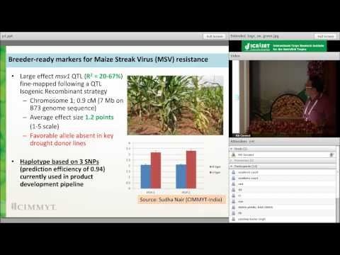 Climate-resilient maize development and delivery in the tropics through public-private partnerships