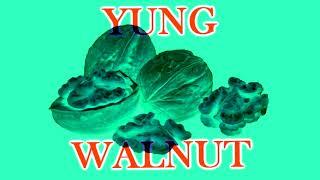 yung walnut - bathroom break 2