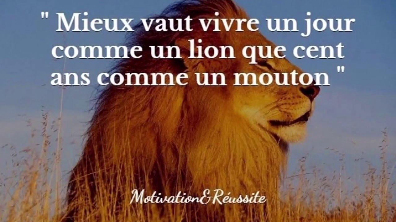 Best Of Meilleurs Citations Motivation Et Réussite Pour Succès 2 Min En Français Compilation