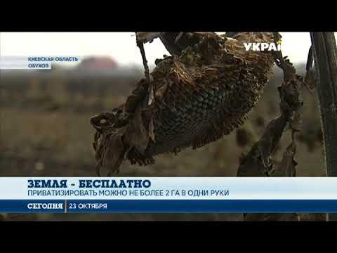 Каждый украинец может бесплатно получить несколько гектаров земли