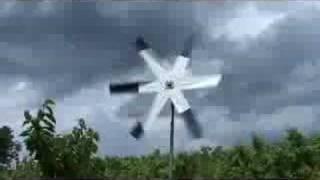 UMass Video Fruit Advisor - June 20, 2008