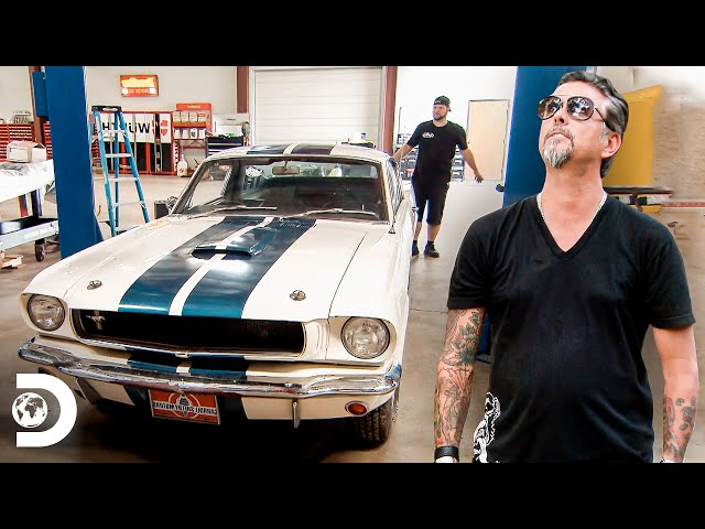 Paga 300 mil dólares por un Shelby GT 65 | El Dúo mecánico | Discovery Latinoamérica