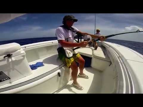 Bahamas Blue Marlin 650lbs
