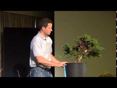 2013 AABC convention in Canberra - Ryan Neil Juniper Demonstration