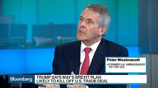 Ex-Amb. Westmacott Sees May 'a Bit Weakened' by Trump on Brexit