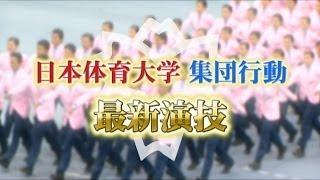 תרגילי סדר יפניים