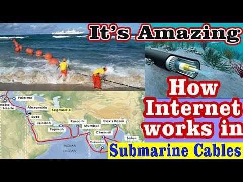 what's inside undersea internet cable in hindi l Who gives us internet
