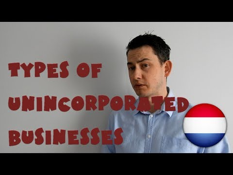 Netherlands #19 - Types of unincorporated businesses