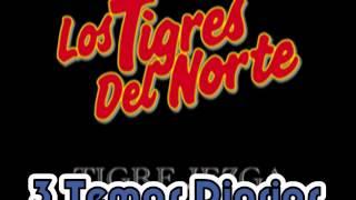 veneno de amorlos tigres del norte album incansables año 1991