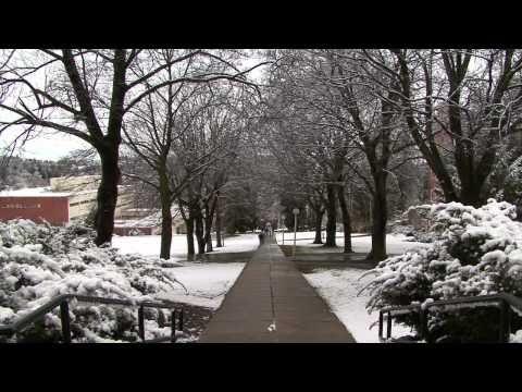 First Snowfall of Fall Semester At WSU Pullman