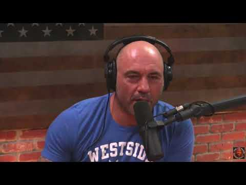 Joe Rogan Reacts to MTV's Fear Factor with Ludacris