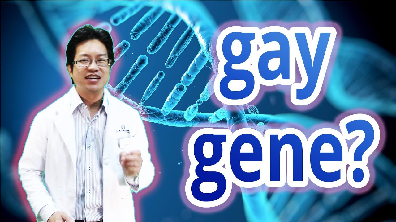 Evidence people are born gay