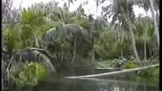 Vanuatu 1991