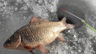 Крупные КАРАСИ ЛАПТИ по последнему льду Зимняя рыбалка весной 2021