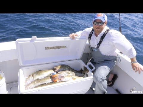 Cod Fishing Off Cape Cod With Hogy Uber Diamond Jigs