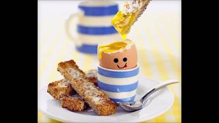 Skandal : Salmonellen in Bio-Eiern - Wovon ernähren sich Freilandhühner?