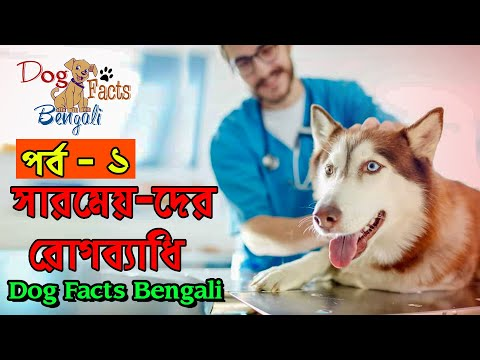 Know About Common Dog Disease | Viral Dog Disease| Part- 1 | Dog Facts Bengali