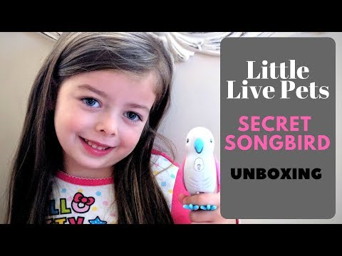 Live Pets Secret Song Bird Unboxing!