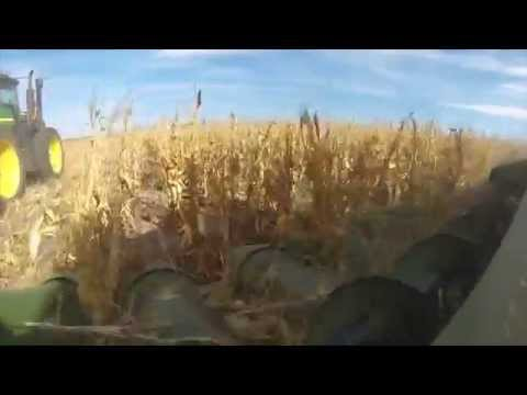 2015 Nebraska Dryland Corn Harvest Raw, GoPro