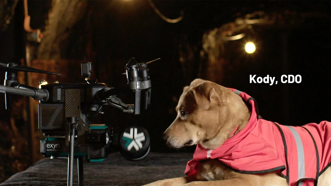 First Dog to Fly a Drone