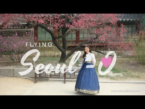 7 Days Seoul Searching and First Solo Travel in South Korea