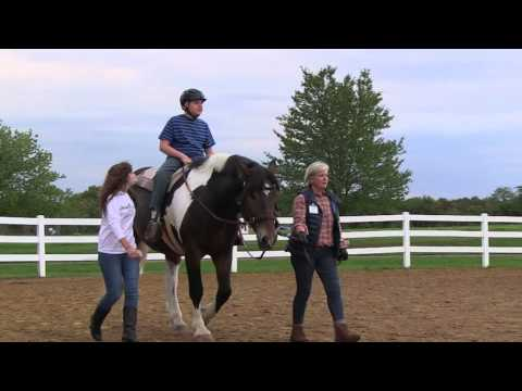 Professional Association of Therapeutic Horsemanship International Overview