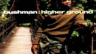 Bushman - Robbery Aggravation