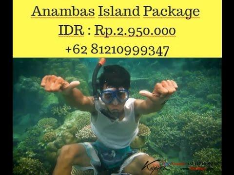 anambas islands wikitravel, Contact 081210999347