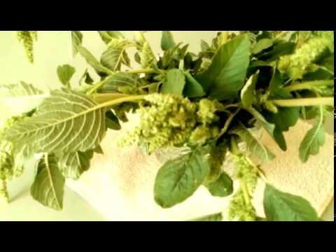 Карталин от псориаза - состав, применение, отзывы