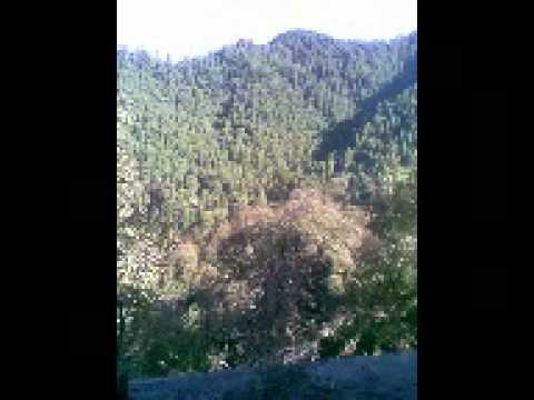 terah valley