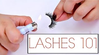 Download False Lashes Tips And Tricks For Beginners! | The how to guide for Lashes Mp3 and Videos