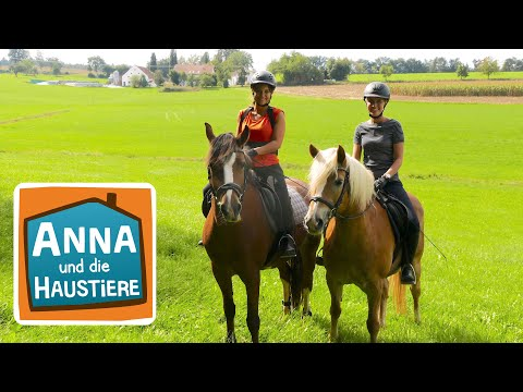 Anna lernt Reiten #3 | Der erste Ausritt | Anna und die Haustiere