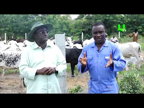AYEKOO: Time with Agric Minister