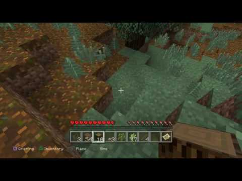 ExtraLife Gaming Marathon! - Minecraft