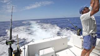 Big Wahoo Strike in the Bahamas