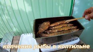 копчение рыбы в домашних условиях.Копчение рыбы в коптильне.Сколько коптить рыбу в коптильне