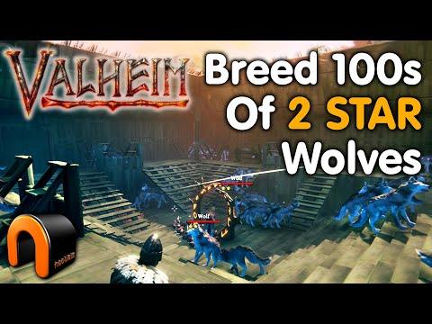Valheim WOLFAMATIC Breed 100's Of TWO STAR Wolves #Valheim  