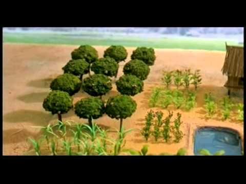 SCD:Integrated farm