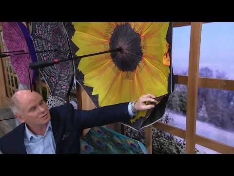 """Revers-a-Brella 44"""" Auto-Open Umbrella with Reflective Border on QVC"""