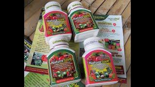 Video TUTORIAL  Cara stek batang tanaman dengan formula Nature Stek download MP3, 3GP, MP4, WEBM, AVI, FLV Juli 2018