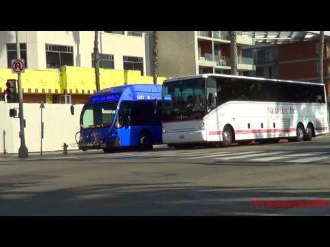 Santa Monica Big Blue Bus Spotting