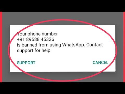 whats app problem