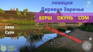 Русская рыбалка 4 - река Сура - Рыбалка на дохлого живца