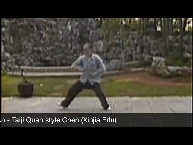 Ling Zhi An - Tai Chi style Chen Xinjia Erlu  [陈氏太极拳新架 Taijiquan style Chen]