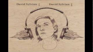 David Sylvian -- Before The Bullfight (SD) .avi
