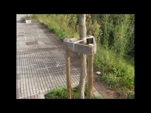 Abandono paseo de Goian Tomiño a Vila Nova de Cerveira Portugal 1 diciembre 2015