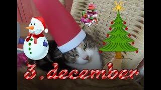 3.december | Julekalender 2017 | Julepynt Og Nissehuer